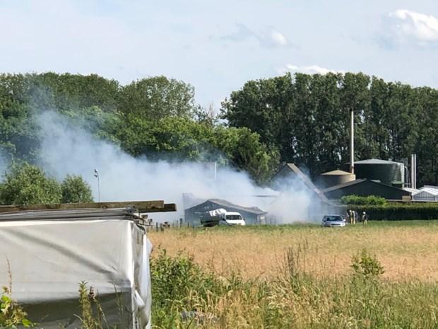 Brand in loods zorgt voor felle rookpluim boven Rumst