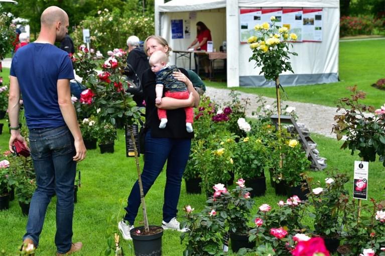 Rozenfeesten Vrijbroekpark brengen bezoekers in 'retro-sfeer'