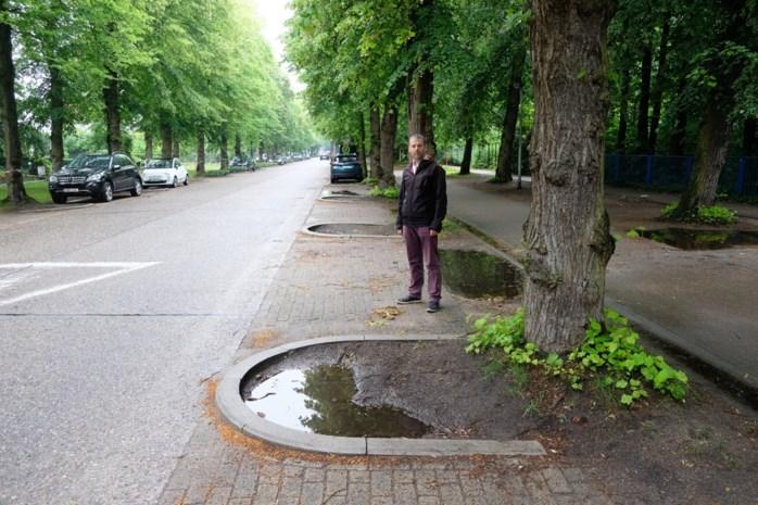 """Gemeente verduidelijkt parkeerplaatsen in Door Verstraetelei: """"Chaos voor en na school"""""""