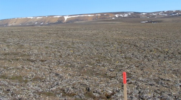 Schokkende ontdekking: permafrost ontdooit 70 jaar vroeger dan wetenschappers verwachtten