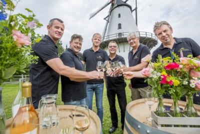 Eerste Antwerpse roséwijn geoogst in Boechout