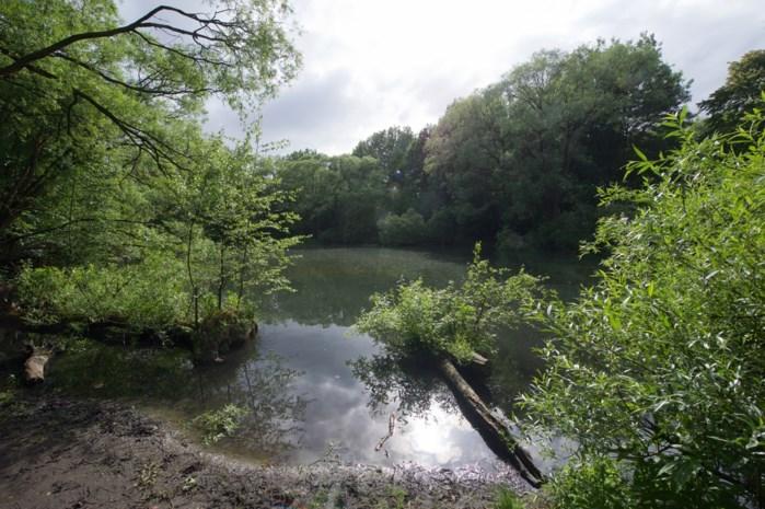 Lichaam van vrouw gevonden in vijver in natuurgebied Wolvenberg