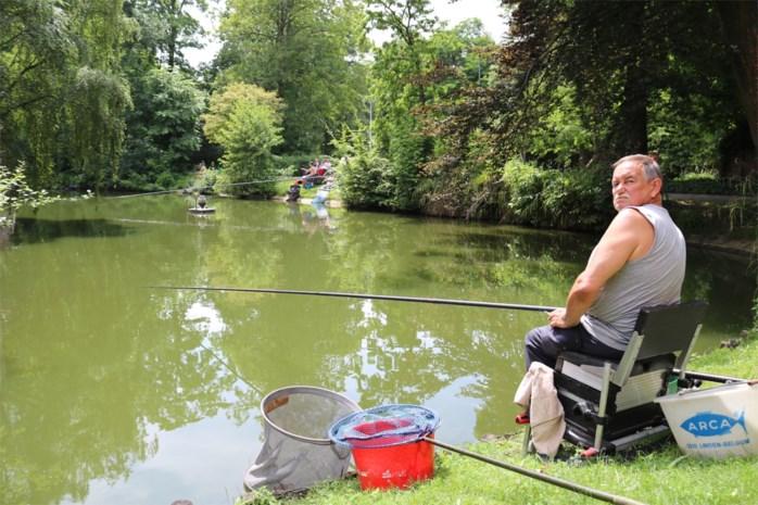 Sint-Niklase visclubs op het droge