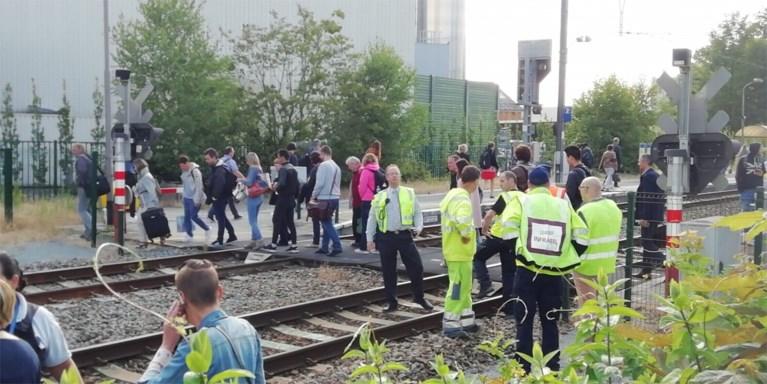 Bestuurder zonder rijbewijs slalomt tussen slagbomen, trein kan aanrijding niet vermijden