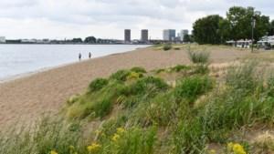 """BUURTREPORTAGE. Stad wil van Sint-Anna Plage opnieuw 'hotspot' maken: """"Het is hier nu al het paradijs"""""""