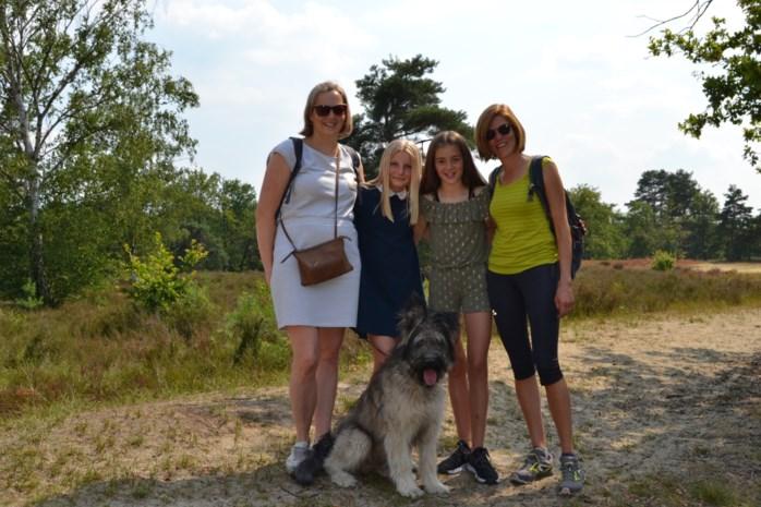 """Op wandel in internationaal bekroonde Kesselse Heide: """"Dat lijkt hier wel Afrika"""""""