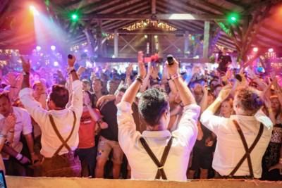 Viva De Romeo's: schlagers zetten Tomorrowland op stelten