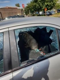 Omstaanders redden hondje dat door baasje werd achtergelaten in snikhete auto