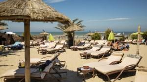 De Grote Zomerbartest. Bamboo Beach in Blankenberge: Afrikaanser dan Afrika