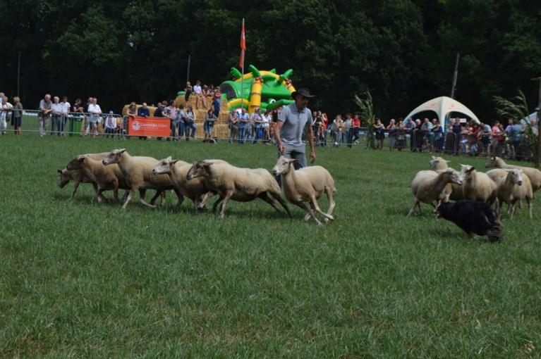 Jarige Landelijke Gilde zorgt voor geweldig dorpsfeest