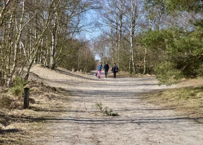 Gezocht: natuurgids voor Grenspark Kalmthoutse Heide
