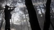 Nieuwe bosbranden uitgebroken in Griekenland