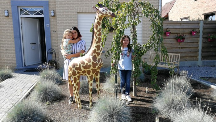 """Dief steelt babygiraf van 4-jarige Maythe uit voortuin: """"Ze heeft al veel traantjes gelaten"""""""