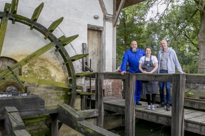 """Eeuwenoude olieslagmolen is ook hippe zomerbar Chillmill: """"Dit is een van de meest levende molens van Vlaanderen"""""""