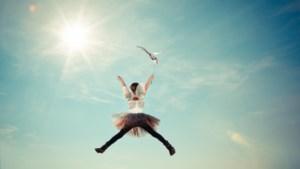 Zelf vliegen of weidse panorama's bewonderen: tien tips in onze provincie