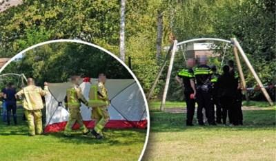 Vijf verdachten blijven aangehouden: slachtoffer in speeltuin was dove tuinman Martin (32)