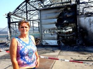 """Grote schade na brand bij tuinbedrijf Van den Bosch: """"We zullen de loods moeten afbreken"""""""