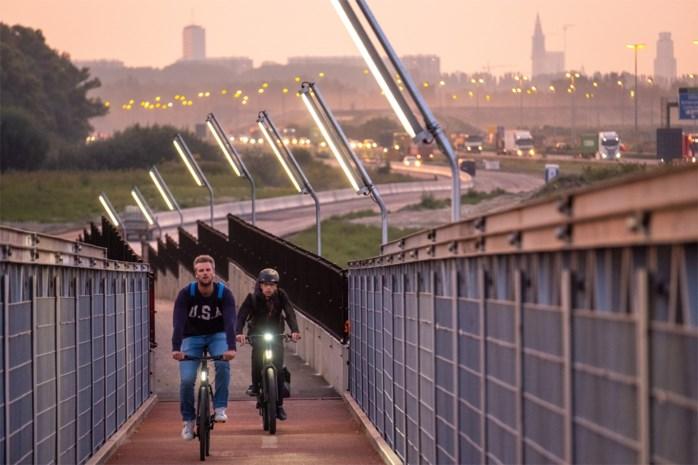 IN BEELD. Tijdelijke fietsbrug over E34 geopend (maar Beverse fietsers blijven op hun honger zitten)