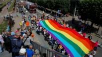 Homoseksualiteit zit (een beetje) in de genen: niet één homo-gen, maar vijf