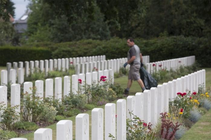Een kerkhof als geen ander: de militaire begraafplaatsen in Geel en Kasterlee zijn een wereld apart