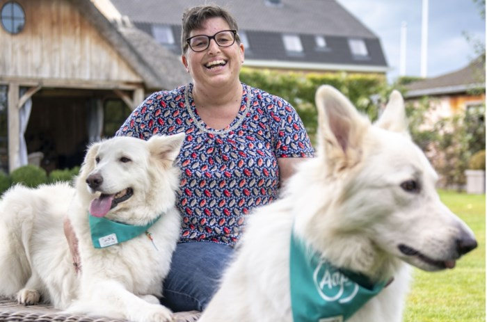 Nieuw: honden helpen psychiatrische patiënten