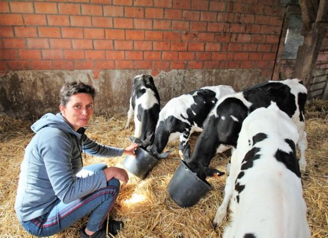 """Gasthuishoeve Boshoek breidt uit tot speel-, leer- en zorgboerderij: """"We willen het imago van de landbouwer opblinken"""""""
