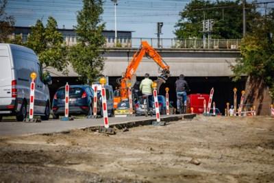 """Sp.a uit kritiek op nieuwe kap: """"Compensatie omgehakte bomen moet sneller"""""""