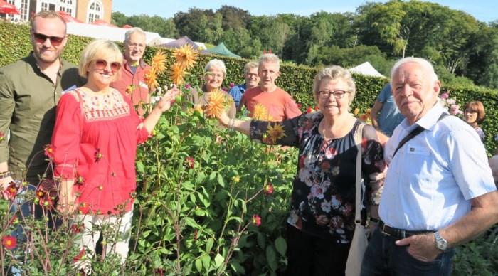 """Grootste collectie dahlia's in Schoten: """"Miskende bloem verdient opnieuw aandacht"""""""