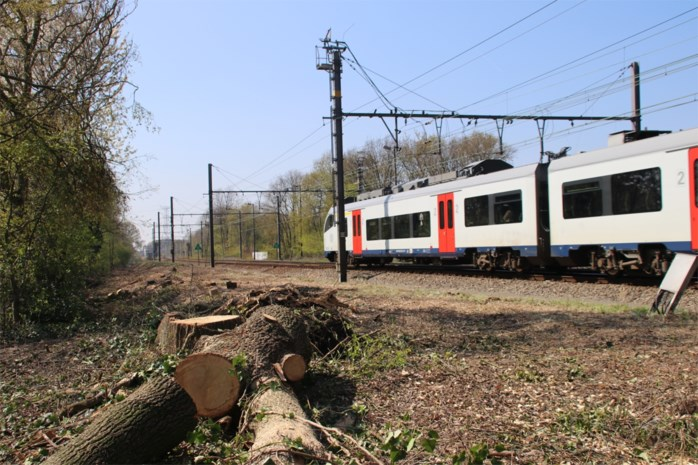 Kempense treinen rijden stipter, maar worden minder comfortabel