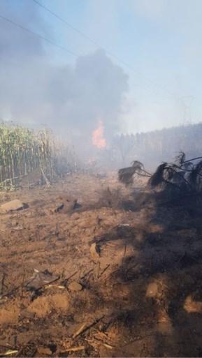 Belgische F-16 stort neer in Frankrijk: ook piloot die aan hoogspanningskabel hing, is slechts lichtgewond