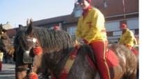COLUMN. Blinkende stijgbeugels, bloemetjes, een braaf paard en een kroon: gansrijden is zo veel meer