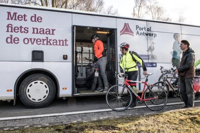Pendel- en Fietsbussen in Antwerpse haven blijven rijden, ritten op rechteroever worden onderzocht