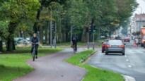 """Fietsersbond misnoegd over heraangelegde Fruithoflaan: """"Te smal en lastig voor bewoners en bezoekers"""""""