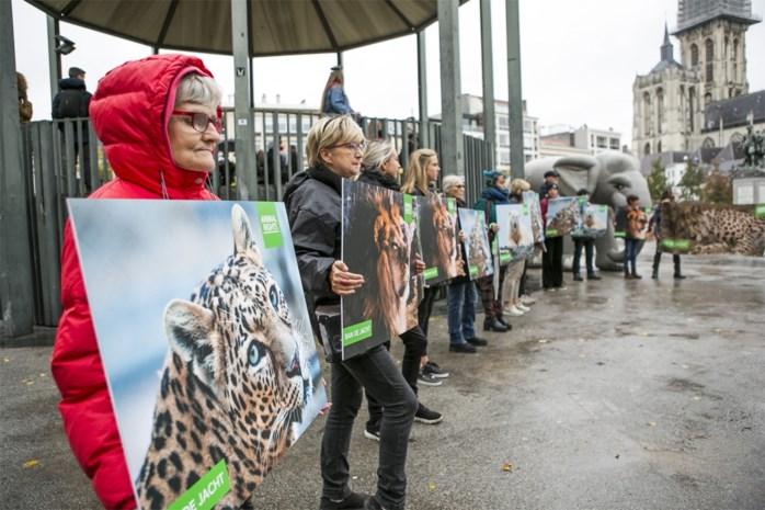 Animal Rights voert op Groenplaats actie tegen jachtsafari's