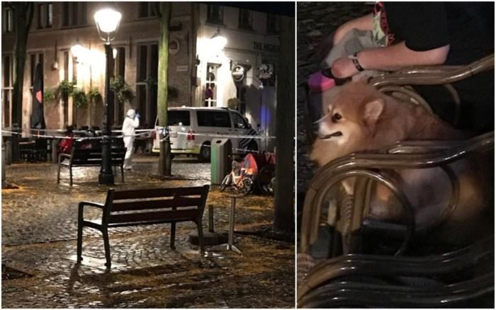 Maria (88) gruwelijk vermoord door ex-buur tijdens wandeling met hondje: buurt Stadswaag geschokt