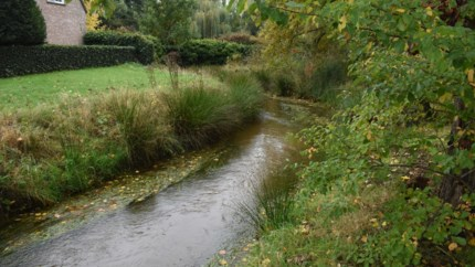 Provincie legt overstromingsgebied aan naast Scheppelijke Nete