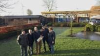 Plan voor windmolen in Oosterlo beroert Stelen