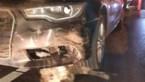 Automobilist rijdt in één klap 19 everzwijnen dood in Heusden-Zolder