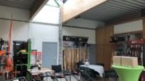 """Vijf bosmaaiers gestolen in tuincentrum: """"Misschien moeten we 's nachts waakhonden inzetten"""""""