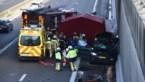 Auto rijdt in op file A12: bestuurder overleeft klap niet