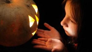 Halloween komt eraan: zet deze Halloweentochten alvast in je agenda