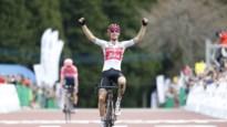 Bauke Mollema blijft op dreef en zegeviert nu ook in Japan Cup