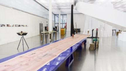 Nu te bewonderen in het Provinciehuis: kolossale sequoia leeft voort in Antwerpia-tafel