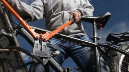 Fietser zonder licht blijkt goed gekende fietsendief te zijn