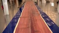 Een van grootste tafels ooit gemaakt nu te bezichtigen in Antwerps provinciehuis