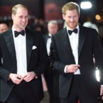 Prins William maakt zich zorgen over Harry en Meghan