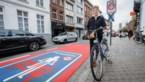 """Nieuwe schepen Vicky Vanmarcke: """"Een fietsvriendelijk beleid is niet anti-auto"""""""