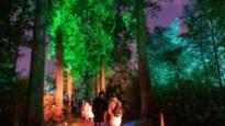 De Grote Schijn is terug met magisch schouwspel: wegdromen in betoverend Rivierenhof