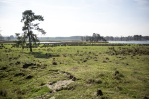 Kempen maken kans op eigen nationaal park