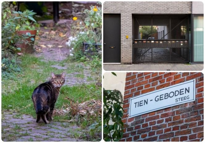 """Verborgen steegjes in Antwerpen, de Tien-Gebodensteeg: """"Als iemand een lief heeft, heeft iedereen dat meteen in de gaten"""""""